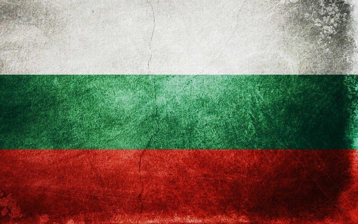 флаг болгарии фото лилии садовые