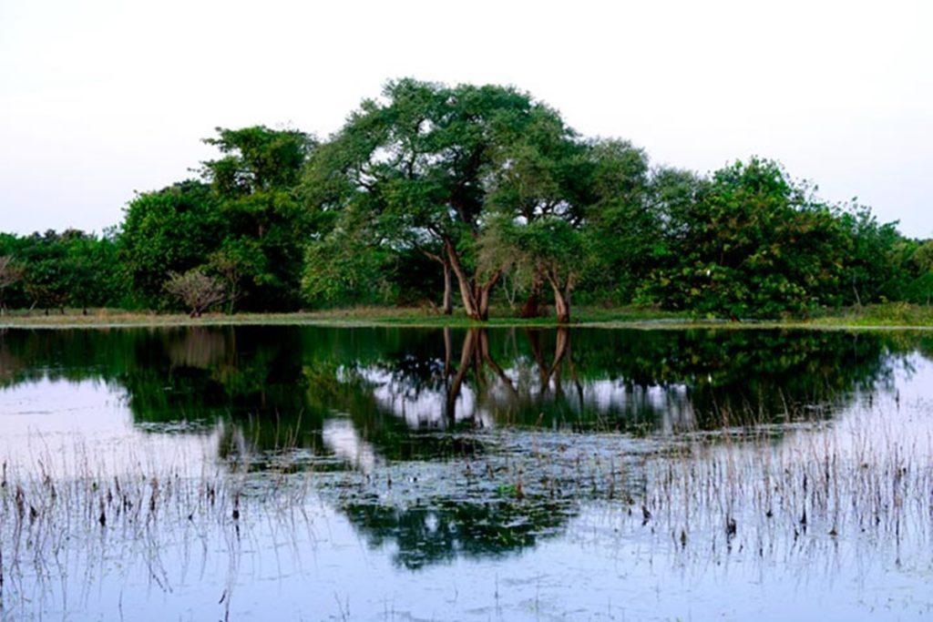 национальный парк Илхас де Оранго