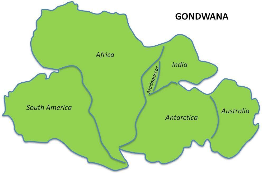 гондвана